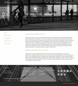 City Scene website design