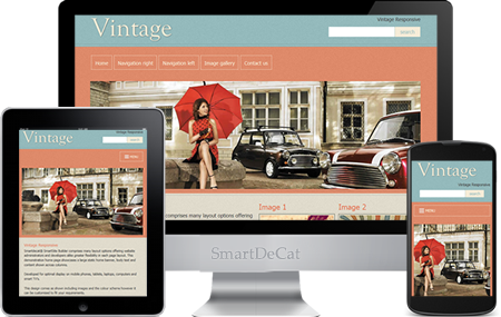 Creative website design Darlington & Barnsley | SmartDeCat